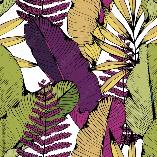 Vector seamless pattern with tropical branches and leaves. Hand drawing. Decorative background - 159171859