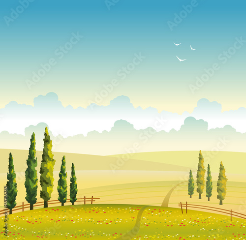 Summer landscape - field, cypress and cloud. Vector illustration.
