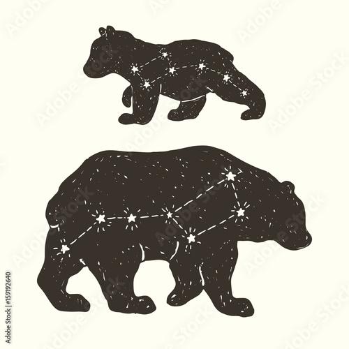 Constellation family