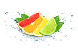 Citrus splash water isolated