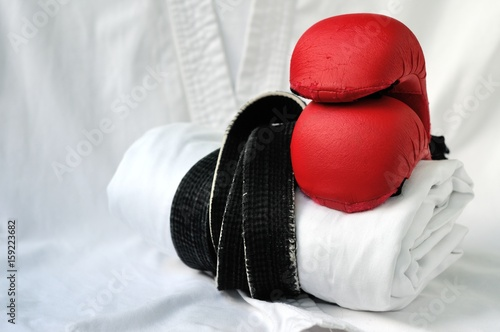 Form for practicing martial arts Poster