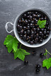 Quadro Blackcurrant berries with leaves, black currant