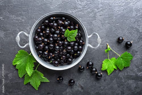 Blackcurrant berries with leaves, black currant - 159241843