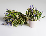 Romantic bouquet of Lavender flowers and Eucalyptus leaves in retro style on gray background. Shallow depth of field.