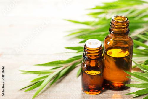 Plakat fresh tea tree leaves and essential oil