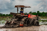 farmer driving tractor for preparing the land for rice farming.