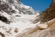 Chalaadi glacier near Mestia - Svaneti, Caucasus mountains, Georgia