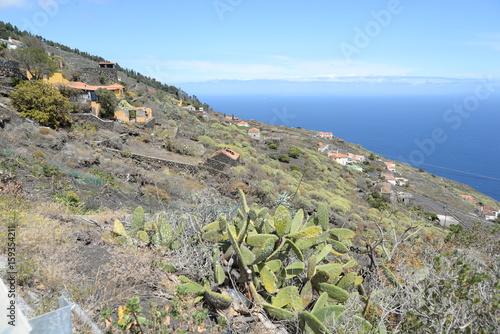 Südostküste von La Palma Poster
