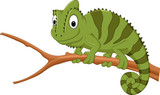 Cartoon chameleon on a branch