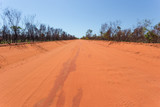 Burnt out vegetation from bushire along the red pindan road from Broome to Cape Levique in the Kimberley