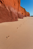 Red Pindan Cliffs at low tide at James Price Point, Western Australia