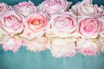 Beautiful delicate roses on a blue shiny mirror background covered with drops of water. Beautiful reflection of colors in the surface.