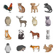 Deer, tiger, cow, cat, rooster, owl and other animal species.Animals set collection icons in cartoon style vector symbol stock illustration web.