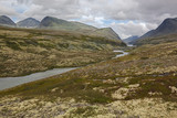 Rivulet flows through tundra on high mountain plateau in Rondane National park, Norway