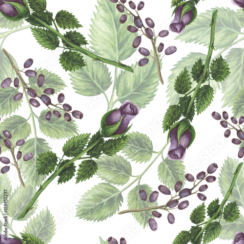 Seamless Pattern of Watercolor Deep Violet Buds and Green Leaves - 159457237