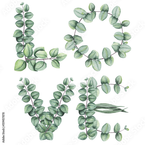 Word Love with Watercolor Leaves and Eucalyptus - 159457878