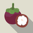 Mangosteen isolated, Mangosteen icon, vector illustration. - 159462051