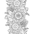 Vector seamless pattern with outline open Sunflower or Helianthus flower and leaves on the white background. Floral pattern with ornate Sunflowers in contour style for summer design or coloring book. - 159474465