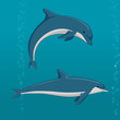 cartoon dolphins in different poses - 159475888