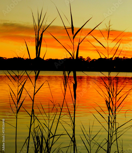 Poster Oranje eclat sunset