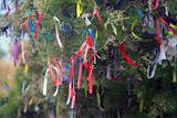 Ribbons on a tree for making wishes - 159581817
