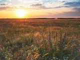 schöner Sonnenuntergang über den Feldern in Österreich