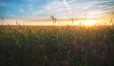 schöner Sonnenuntergang über den Feldern in Österreich - 159618450