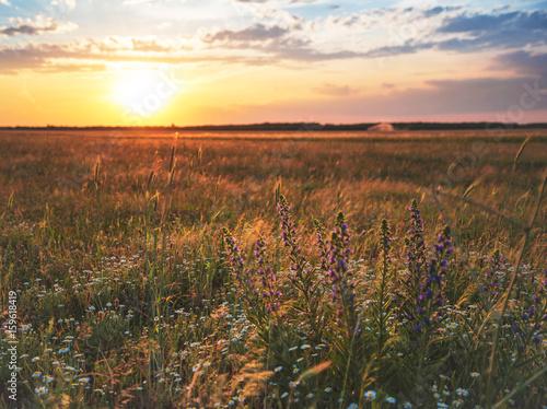 Tuinposter Diepbruine schöner Sonnenuntergang über den Feldern in Österreich