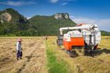 Farmers harvesting using combine harvesters - 159633266