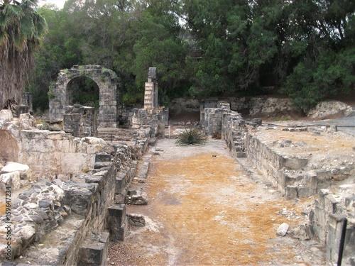 Römische Ruine mit Pfau