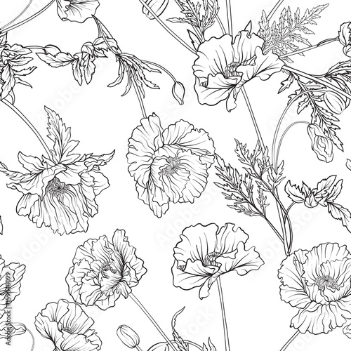 Seamless pattern with poppy flowers in botanical vintage style. Outline hand drawing coloring page for adult coloring book. Stock line vector illustration. - 159648099