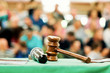 auction  bid sale judgment mallet
