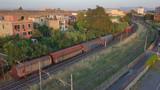 Passaggio di un vecchio treno merci in un tratto isolato di ferrovia italiana