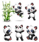 Cute baby pandas collection