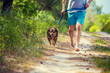 A man runs barefoot with a dog on a dirt road in summer