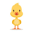 Sweet yellow duckling, emoji cartoon character vector Illustration