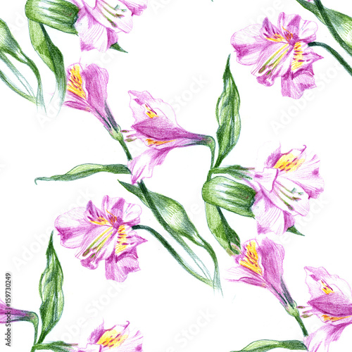 Fototapeta Seamless background pattern with watercolor drawings and pencil sketches of blooming pink flowers
