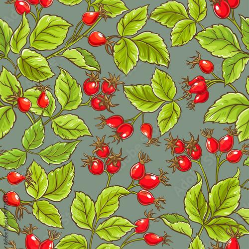 Fototapeta wild rose vector pattern