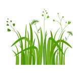 Eco green grass green - 159764059