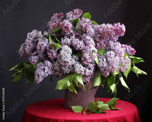 Purple lilac in the jar.