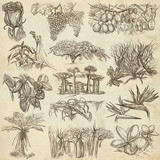 flowers and trees around the world - an hand drawn collection, freehand sketching - 159764857