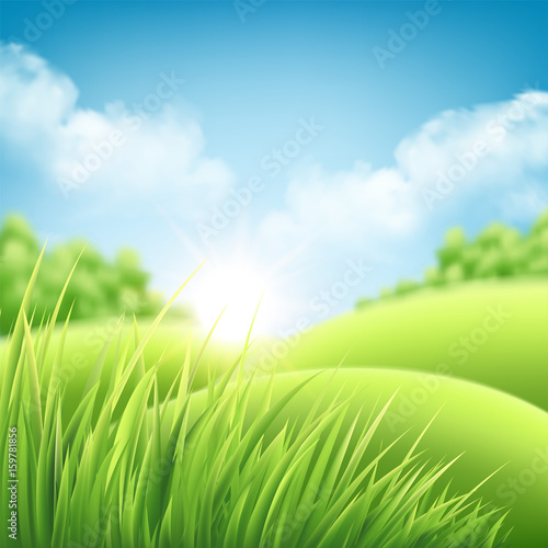 Poster Lime groen Summer nature sunrise background, a landscape with green hills and meadows, blue sky and clouds. Vector illustration