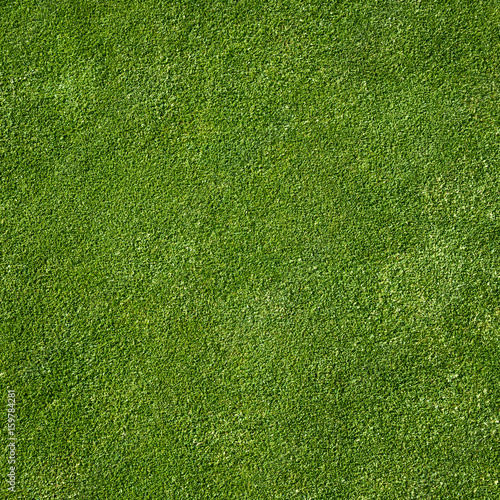 Top view of golf course green as a background  - 159784281
