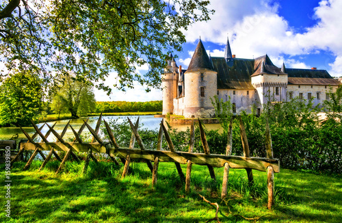 Romantic medieval castles of Loire valley - beautiful Le Plessis Bourre Poster