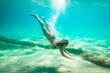 Swimming Under The Sea