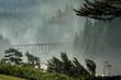 Misty Bridge at Heceta Head