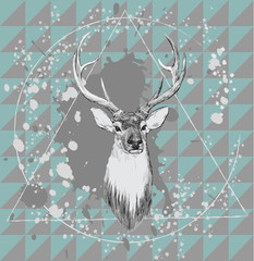 Illustration with deer head. Hand drawn vector.