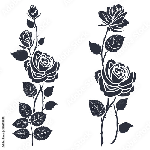 Fototapeta Rose tattoo. Silhouette of roses and leaves on a white background.