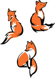 Fox sitting in a different poses