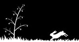 Silhouette of hare in the grass.